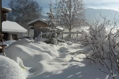 Garten-im-Winter-1