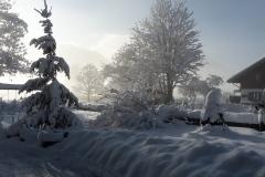 Garten-im-Winter-2