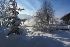 Garten-im-Winter-3